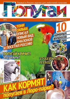 popugai_cover03_400.jpg