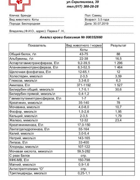 анализ_3008.JPG