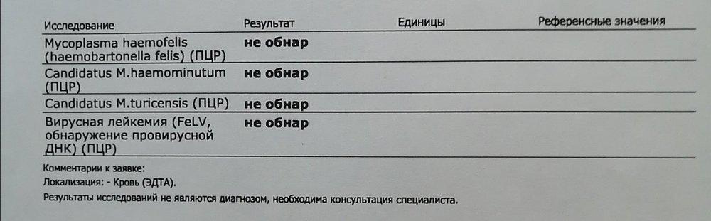IMG_20210122_234936.jpg